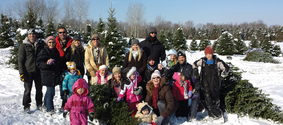 Storeyland Christmas Tree Farm